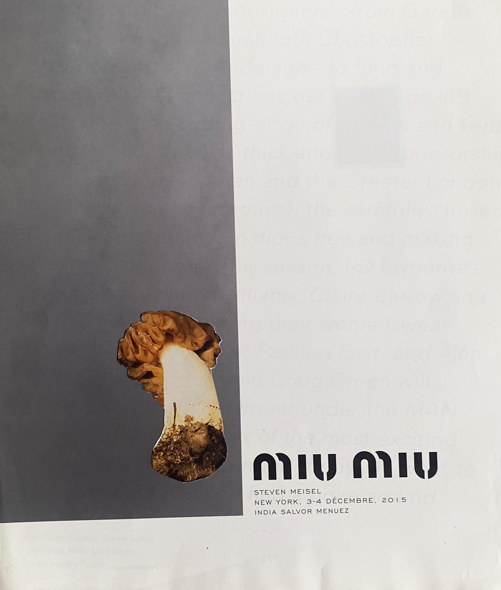 13. MUSHROOM-1